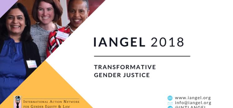 IANGEL Impact Report 2018